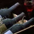 vinuri si si recolte Bordeaux